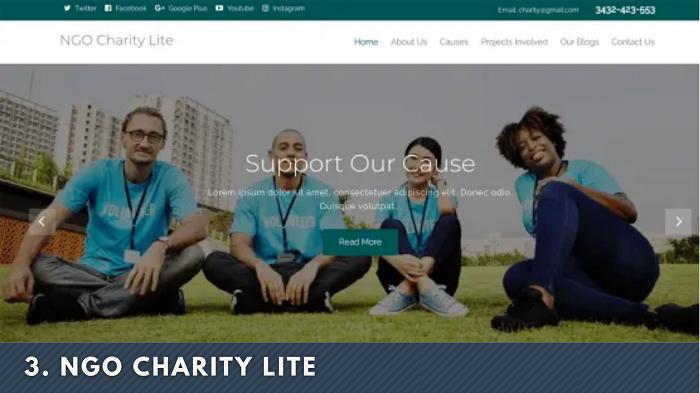 NGO Charity Lite wordpress themes